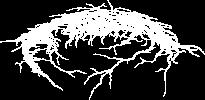 aeonless-logo-small
